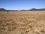 The Pumice Desert, Formed When Mt Mazamerupted 7700 Years Ago Photographic Print by Robert & Jean Pollock