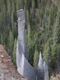 Weathering of Ash Flow Deposits into Pinnacles on the Cliffs around Crater Lake Photographic Print by Marli Miller
