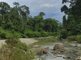 Segama River in the Lowland Rainforest of the Danum Valley Conservation Area, Sabah Photographic Print by Thomas Marent
