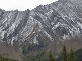 Folded Paleozoic Limestone on a Mountainside, Canadian Rockies, Alberta, Canada Photographic Print by Marli Miller