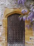 Heavy Oak 17th Century Door Studded with Iron Chinese Wisteria Photographic Print by Phillip Smith