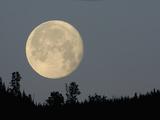 Full Moon over Ridge Kamloops, British Columbia Photographie par Arthur Morris