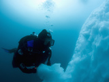 Antarctic Scuba Diver Swimming Near the Underwater Portion of an Iceberg Photographie par Louise Murray