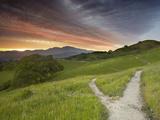 Trails, Mt. Diablo Near Walnut Creek, Central California, USA Photographic Print by Patrick Smith