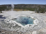 Artemesia Geyser Pool, Upper Geyser Basin, Yellowstone National Park, USA Photographic Print by Richard Roscoe