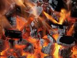 Charcoal Fire Fotografisk tryk af Arthur Morris