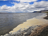 Foam on the Shore of Lake Lake Abert, a Remnant of Pleistocene Lake Chewaucan Photographic Print by Robert & Jean Pollock