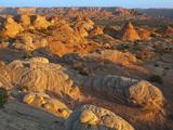 Petrified Sand Dunes, Utah, USA Photographic Print by Gustav Verderber