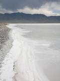 Precipitation of Salt Along the Edge of a Lake in the Great Salt Lake Desert, Utah, USA Photographic Print by Marli Miller