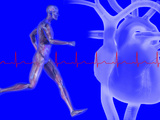 Runner, Male Likeness Showing Musculature and Skeleton Against an Ekg and Heart Photographic Print by Carol &amp; Mike Werner