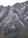 Folded Paleozoic Limestone on a Mountainside, Canadian Rockies, Alberta Note the Upright Anticline Photographic Print by Marli Miller