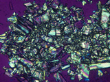 Polarized View of Vitamin D3 Crystals, LM X50 Photographic Print by Arthur Siegelman