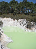 Devil's Bath Lake, Wai-O-Tapu Geothermal Area, Taupo Volcanic Zone, New Zealand Photographic Print by Richard Roscoe