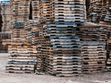 Stacks of Pallets at Pallet Recycling Business, Michigan, USA Photographic Print by Jeffrey Wickett