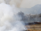 Smoke from Grassland Fire Reduces Visibility and Contributes to Air Pollution Along the Colorado Photographic Print by Jon Van de Grift
