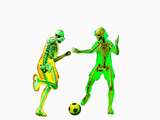 Soccer Players Showing Skeletons Photographic Print by Carol & Mike Werner