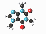 Illustration of a Caffeine Ball-And-Stick Molecular Model Photographic Print by Carol & Mike Werner