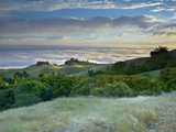 A Strong Breeze and Long Exposure Time Softened the Flowing Grasses and Trees on Mt Tamalpais Photographic Print by Patrick Smith
