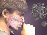 Artist's Concept of the Rhinovirus Which Causes the Common Cold Photographic Print by Carol & Miker Werner