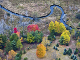 Meandering Stream in Through a Forest and Wetland Habitat in the Fall, Michigan, USA Photographic Print by Jeffrey Wickett