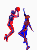 Basketball Players Showing Skeletons Photographic Print by Carol & Mike Werner