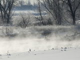 An Evaporation Fog Rises over the Platte River in Winter in Northern Colorado Fotografie-Druck von Jon Van de Grift