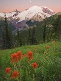 Sunrise with the Moon over Mount Rainier with Paintbrush (Castilleja) Flowers in the Meadow Photographic Print by Geoffrey Schmid