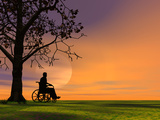 Person Outdoors under a Tree Sitting in a Wheelchair Photographic Print by Carol & Mike Werner