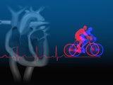 Biomedical Illustration of Exercise (Bicycling), an Ekg, and a Healthy Heart Section Photographic Print by Carol & Mike Werner