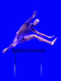 Biomedical Illustration of a Man Jumping over a Hurdle, Showing Musculature and Skeleton Photographic Print by Carol &amp; Mike Werner