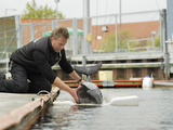 Harbor Porpoise (Phocoena Phocoena) Research Training, Fjord and Baelt, Denmark Photographic Print by Solvin Zankl