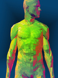 Faceted Male Torso Photographic Print by Carol & Mike Werner