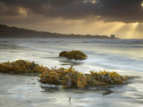 Sunbeams Through Storm Clouds with Seaweeds Washed Ashore on the Sandy Beach Near San Diego Photographic Print by Patrick Smith