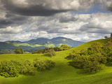 Billowing Cumulus Clouds Build Up on a Spring Afternoon Following a Storm, Mount Diablo, California Photographic Print by Patrick Smith