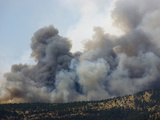 Heavy Smoke from a Wildfire Burning in the Rocky Mountains of Colorado, USA Photographic Print by Jon Van de Grift