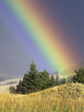 Rainbow Photographic Print by Gary Will
