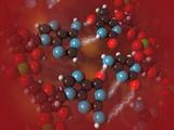 Biomedical Illustration of Four Different Bases in DNA Photographie par Carol & Mike Werner