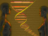 Biomedical Illustration of the Personal Human Genome, the Concept of Individual DNA Testing Photographic Print by Carol & Mike Werner