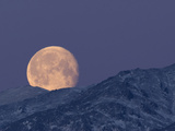Moon over the Winter Alaska Range, Denali National Park, Alaska, USA Photographic Print by Tom Walker