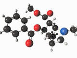 Illustration of the Cocaine (Benzoylmethylecgonine) Molecular Model Photographic Print by Carol & Mike Werner
