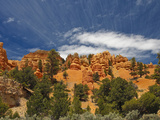 Red Canyon, Bryce Canyon National Park, Utah, USA Photographic Print by Gustav Verderber