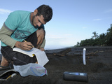 A Costa Rican Researcher Monitoring the Temperature in the Developing Olive Ridley Sea Turtle Nest Photographic Print by Solvin Zankl