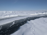 Crack in the Sea Ice About 2 Meters Wide Photographic Print by Louise Murray