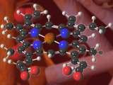 Heme Molecule, the Component of Hemoglobin That Binds Oxygen for Transport to the Cells Photographie par Carol & Mike Werner