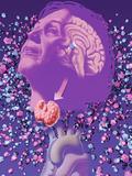 Thyroid, Hormonal Problems in Perimemopausal Women Photographic Print by Craig Zuckerman