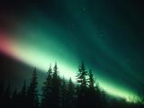 Aurora Borealis or Northern Lights, Alaska Range, Alaska, USA Photographic Print by Tom Walker