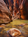 Virgin River Narrows Glows with Reflected Morning Light, Zion National Park, Utah, USA Photographic Print by Geoffrey Schmid