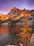 Prusik Peak and Subalpine Larch at Peak Fall Color at Lake Viviane Photographic Print by Geoffrey Schmid