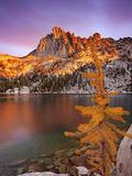 Prusik Peak and Subalpine Larch at Peak Fall Color at Lake Viviane Photographic Print by Geoffrey Schmid