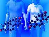 Molecular Models of the Hormones Testosterone (Left) and Estrogen (Right) Fotografisk tryk af Carol & Mike Werner